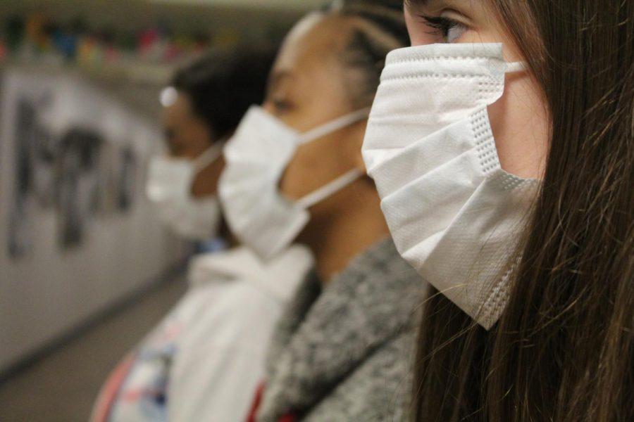 Coronavirus: Explained